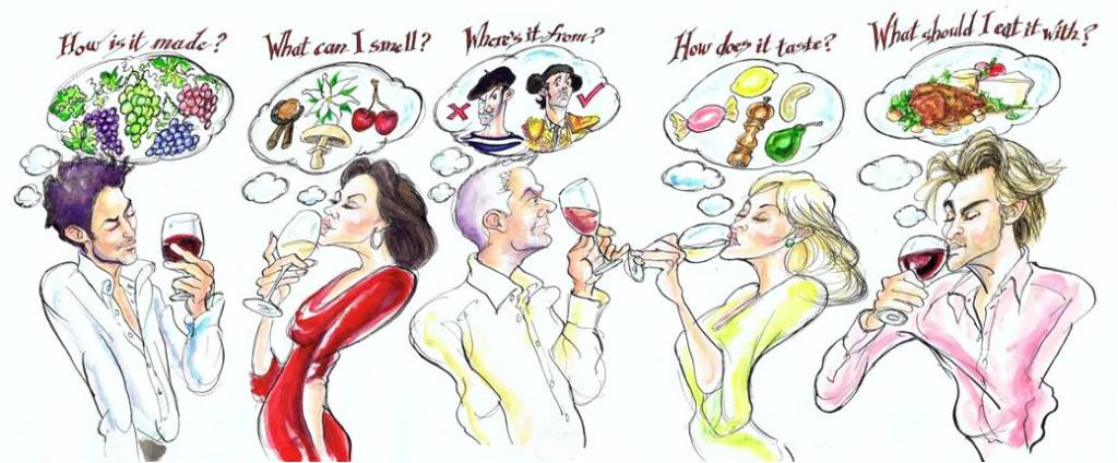 WSET Wine Tasting cartoon